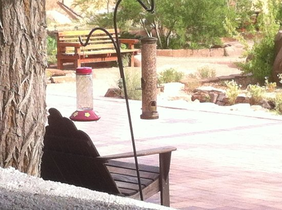 Ojo Caliente Mineral Springs Resort and Spa : Hummingbirds flocked to the feeder, providing hours of quiet enjoyment.