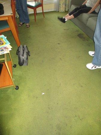 Residhome Nice Promenade: Filthy carpet