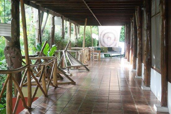 Hostel Plinio: Hallway to rooms