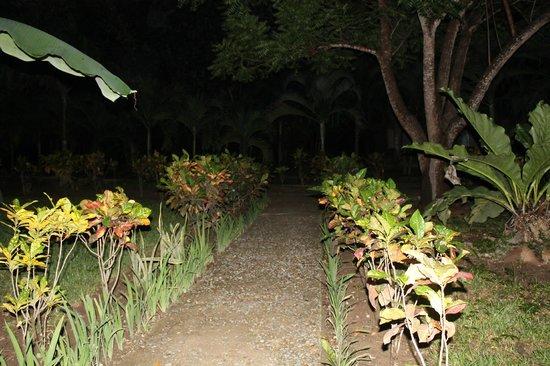 Canon de la Vieja Lodge : jardines