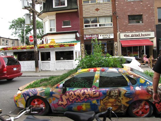 Toronto Urban Adventures: Car garden ?