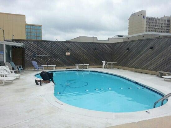 Blue Marlin Motel : swimming pool being cleaned daily