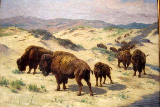 "The Rockwell Museum: ""Buffalo Watering"" Georges-Frederic Rotig"