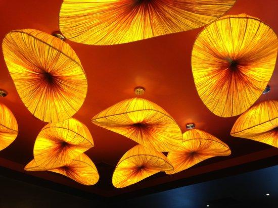 Dragonfly: Artsy ceiling lighting