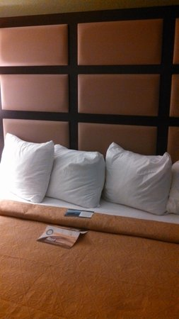 Quality Inn & Suites Marinette: Nice King Bed