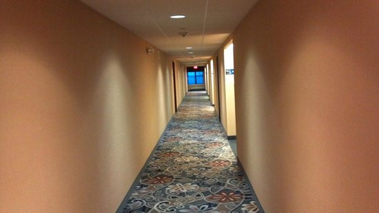 Hampton Inn & Suites Hoffman Estates: Hotel Hallway