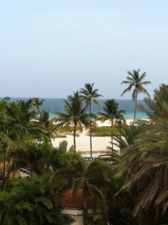Dream South Beach: View of the rooftop pool.