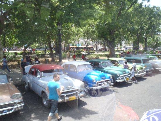History Trip Havana Tour: Jurrasic Park