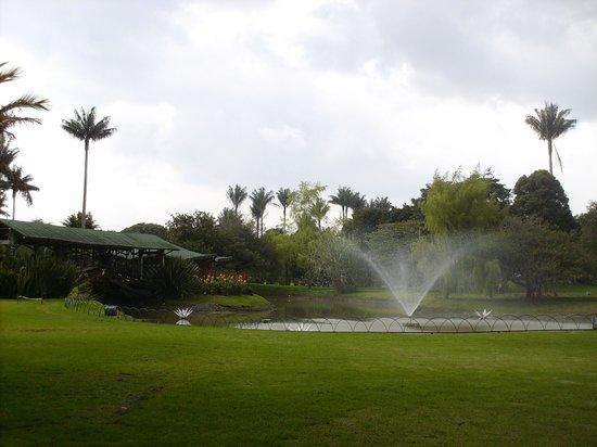 Jardín Botánico de Bogotá Jose Celestino Mutis: Jardín Botánico, fuente