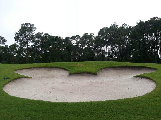 Disney's Magnolia Golf Course: Mickey Mouse Sand Hazard