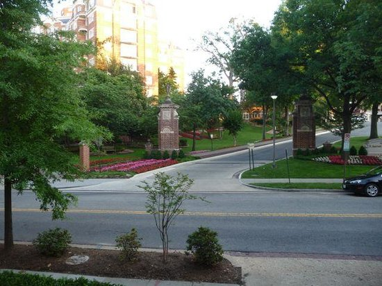 Woodley Park Guest House: Marriott across the road