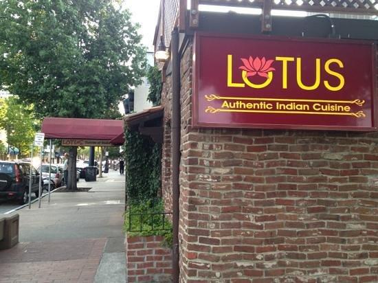 Lotus Cuisine of India: lotus!!