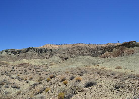 Rainbow Basin Natural Area : Rainbow Basin