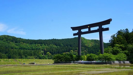 10 Things to Do in Tanabe That You Shouldn't Miss