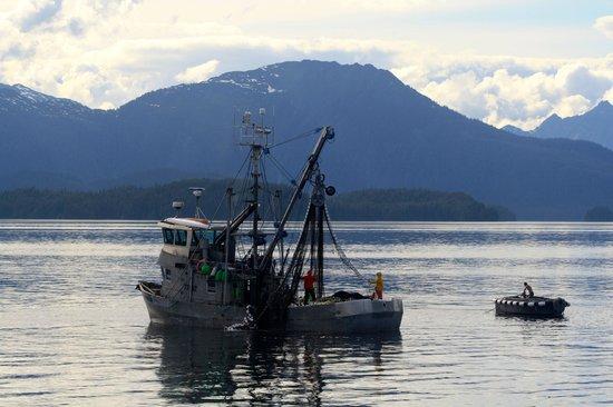 Inside Passage: Salmon Fishing in Chatham Straight