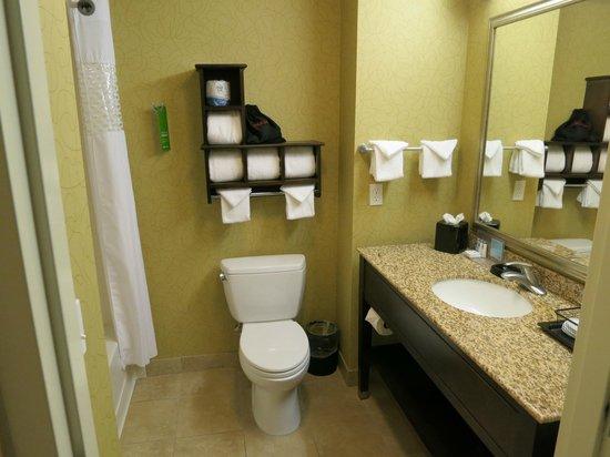 Hampton Inn & Suites- San Luis Obispo: Bathroom