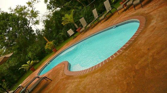 كازا دي تورتوجا: Casa de Tortuga pool