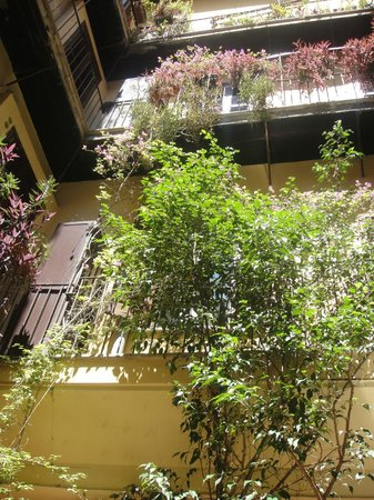 White Hotel: Mirando hacia arriba en el patio interno
