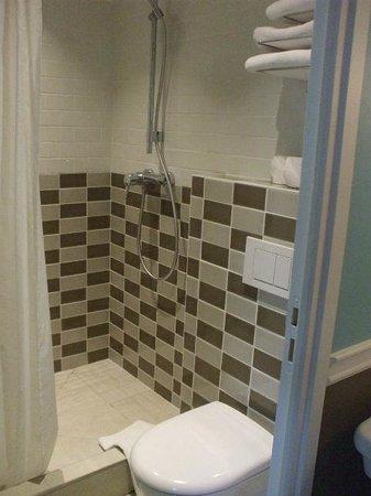 Hôtel des 3 Poussins : シャワー室も広くて快適