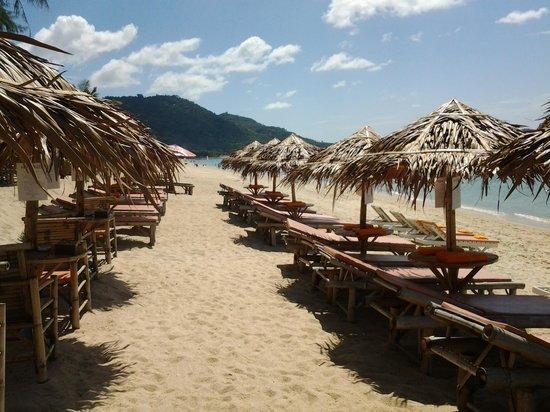 Cafe del Mar: plage amenagée
