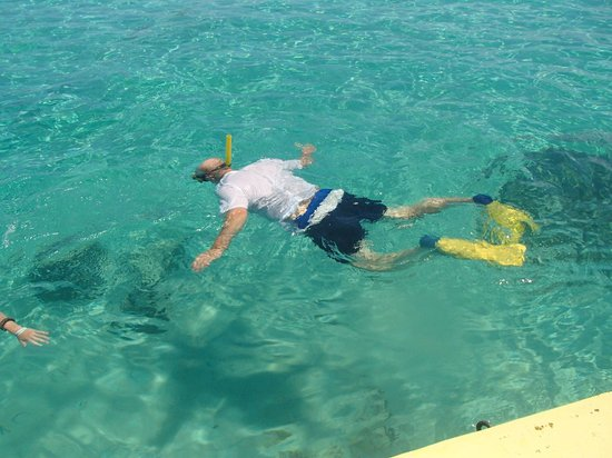 Murphy's Roatan Tours : Bring your snorkel gear for a free activity off the beach.