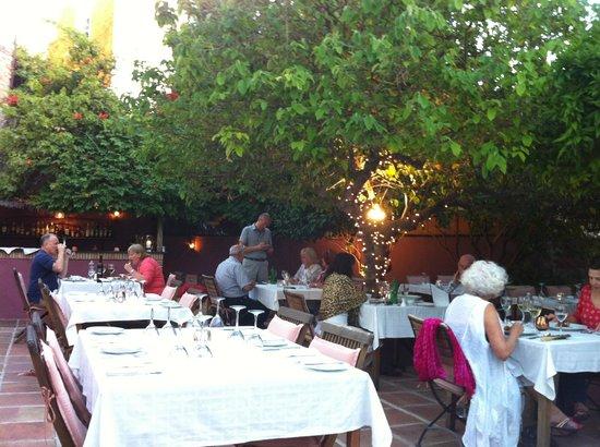 Santiago's Restaurant: View of dining terrace & garden