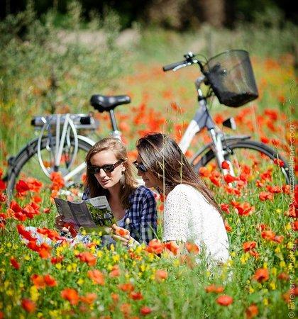 Sun-e-Bike: Coquelicots
