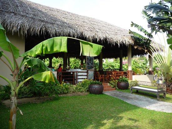 Tropical Mini-Golf : minigolf