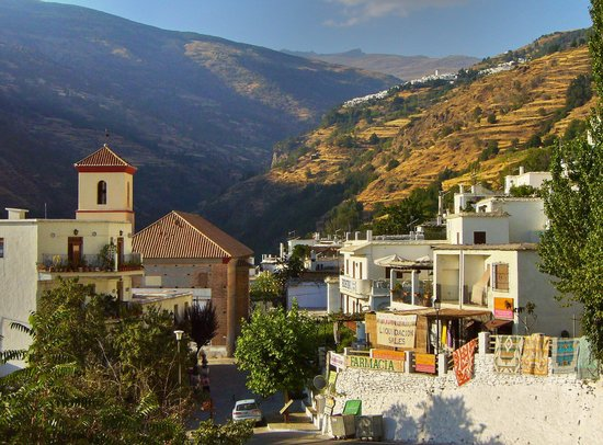 ALSA Touring Granada - Private Tour