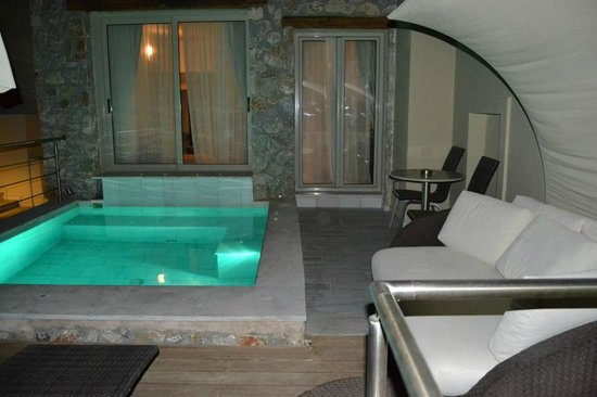 Room with private pool picture of antinea suites hotel - Hotel with private swimming pool in lonavala ...