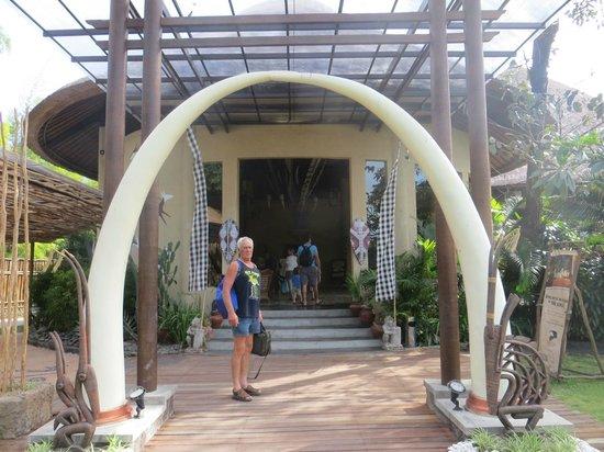 Mara River Safari Lodge : reception entrance