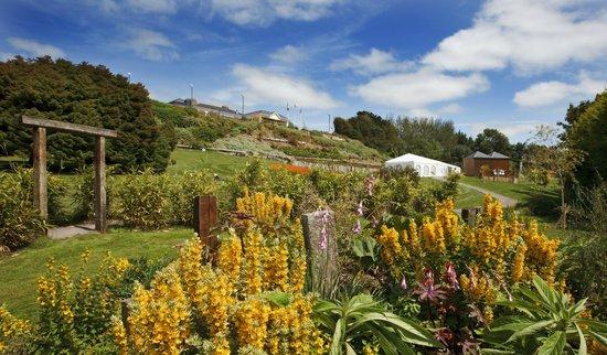 Fernhill Gardens