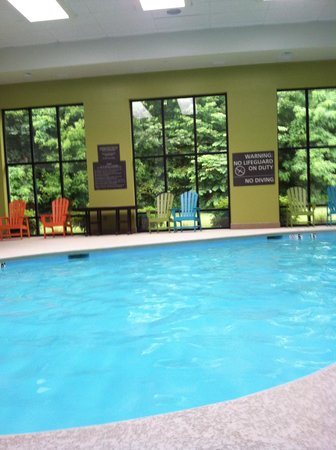 Hampton Inn Marion : Pool