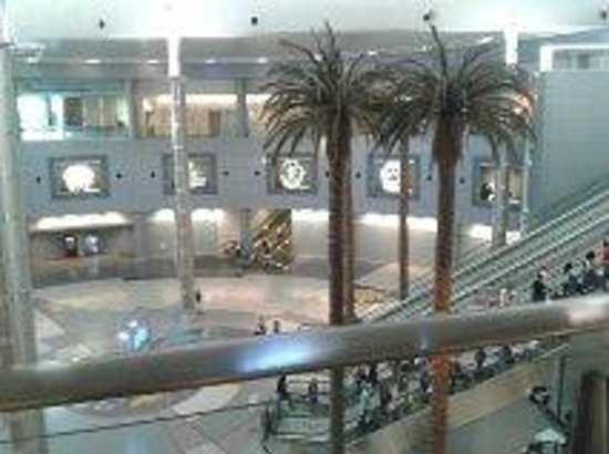 McCarran Intl Airport: loving the indoor palm trees