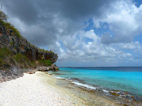 Bon Tuk Eco Tours Bonaire: on the beach