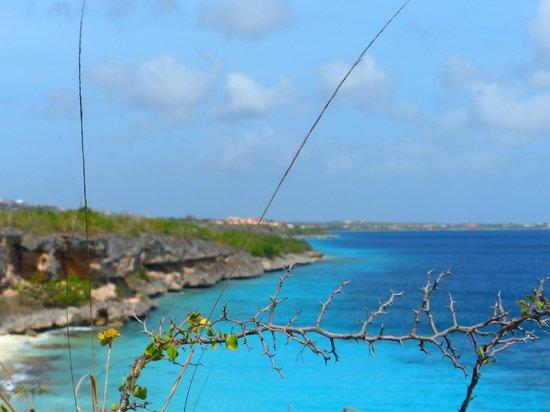 Bon Tuk Eco Tours Bonaire: view from the cliffs