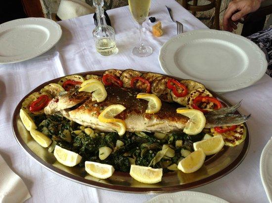 Casa del Mare-Amfora: ресторан Амфоры. Вкусно.