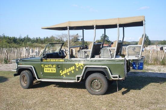 Sodwana Bay Lodge : Turtle Tours