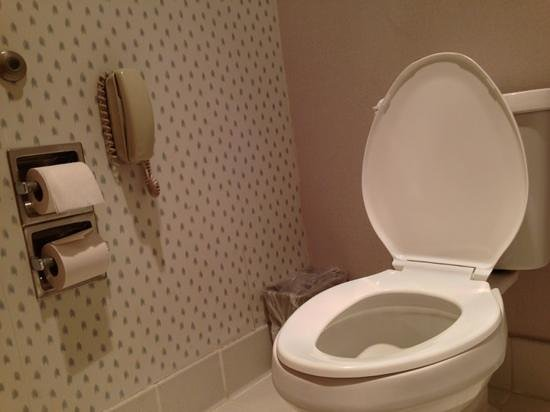Surestay Plus Hotel By Best Western Moses Lake : Toilet Phone!!