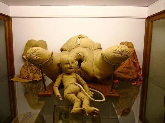 Musee Flaubert et d'Histoire de la Medecine: Madame du Coudray's obstetric mannequin