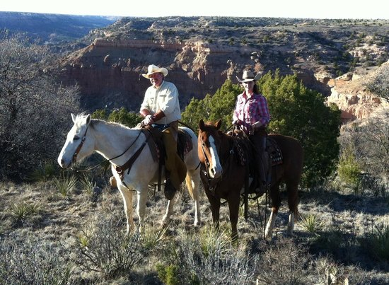 Image result for COWGIRLS AND CATTLE RANCHES