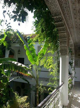 Dar El Assafir : cour intérieure avec jardin et oiseaux