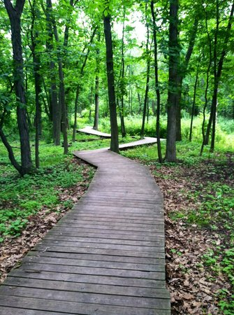 1000 Islands Environmental Center: 1000 Islands trail