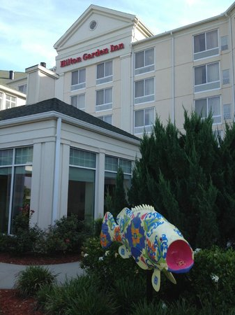 Hilton Garden Inn Roanoke Rapids: Front Entrance