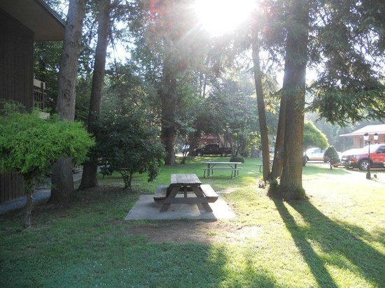 Riverstone Lodge: Relaxing picnic area with swing