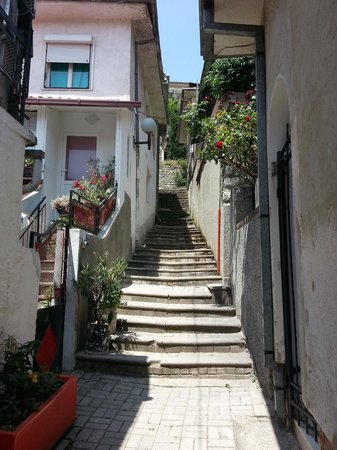 Villa Mesokastro: path to the villa