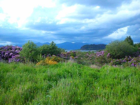 Isle of Eriska Hotel, Spa & Golf 사진