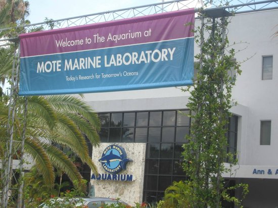 Mote Entrance Picture Of Mote Marine Laboratory And