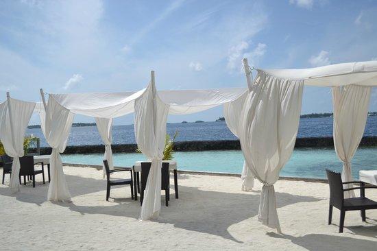 Kurumba Maldives: Ocean Grill