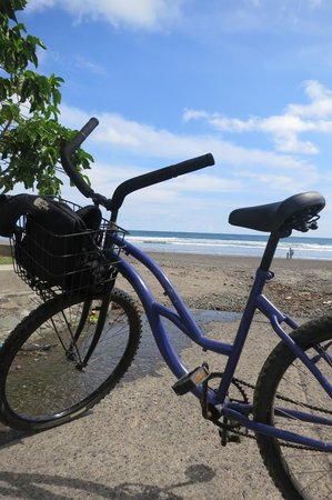 bike rented at Hotel Perico Azul